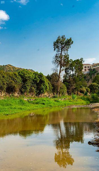 وادي غييلة عيون جارية وخضرة فاتنة في باحة الجمال