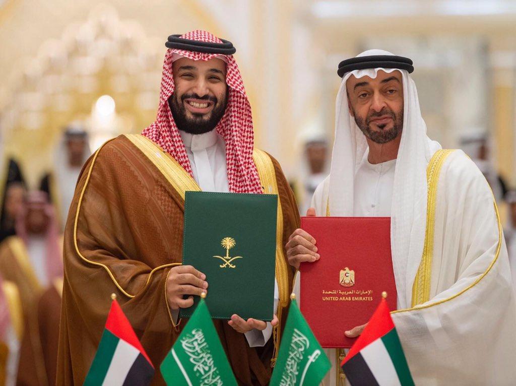 رأس ومحمد بن زايد اجتماع مجلس التنسيق..ولي العهد:الإمارات ضيف قمة العشرين في السعودية